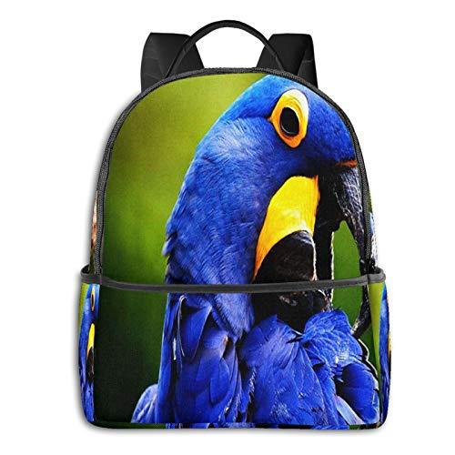 Top 8 Ara Rucksack – Damen-Rucksackhandtaschen